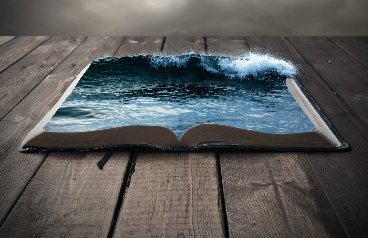Book of the ocean